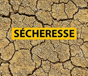 Sécheresse en Sarthe – mesures de restriction eau