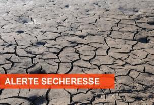 Sécheresse en Sarthe – Mesures de restriction d'eau renforcées